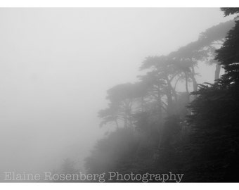 Big Sur, Mist, Fog, Black & White Photography, Wall Art, California, Highway 1, Mist, Travel, Home Decor, Fine Art Photography