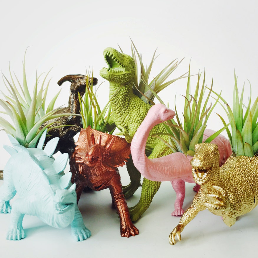 Made to order large dinosaur planter with air plant