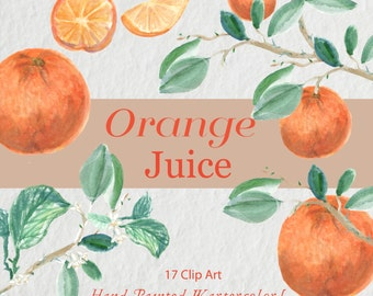 Digital clip art Orange Juice watercolor