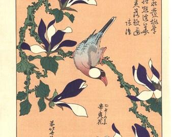 "Japanese Ukiyo-e Woodblock print, Hokusai, ""Java Sparrow on Magnolia """