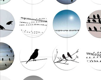 "Digital Download, Bird On Wire, Digital Collage Sheet, Pendant, Bottle Cap, 1.5"", 1.25"", 1 inch, 30mm, 25mm circles, dcc021"