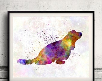 Sussex Spaniel 01 in watercolor - Fine Art Print Poster Decor Home Watercolor Illustration Dog - SKU 1449