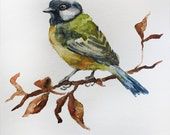 ORIGINAL Watercolor Painting Bird Painting little tit for a room for chirdren Original Tit on a branch watercolors wall Art OOAK