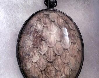 """Rattlesnake Skin Pendant on 18"""" Chain"""