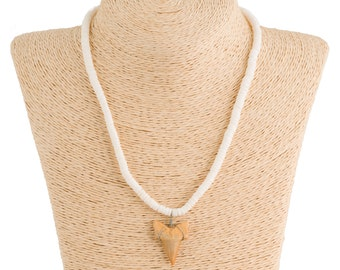 Shark Tooth Pendant on Puka Shells Necklace