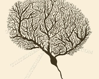 One Neuron Purkinje Cell Brain Neuroscience Science Art Psych Psychology Psychiatry Ink Print