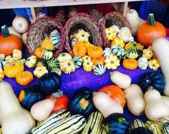 Organic - Holiday Harvest Gift Basket