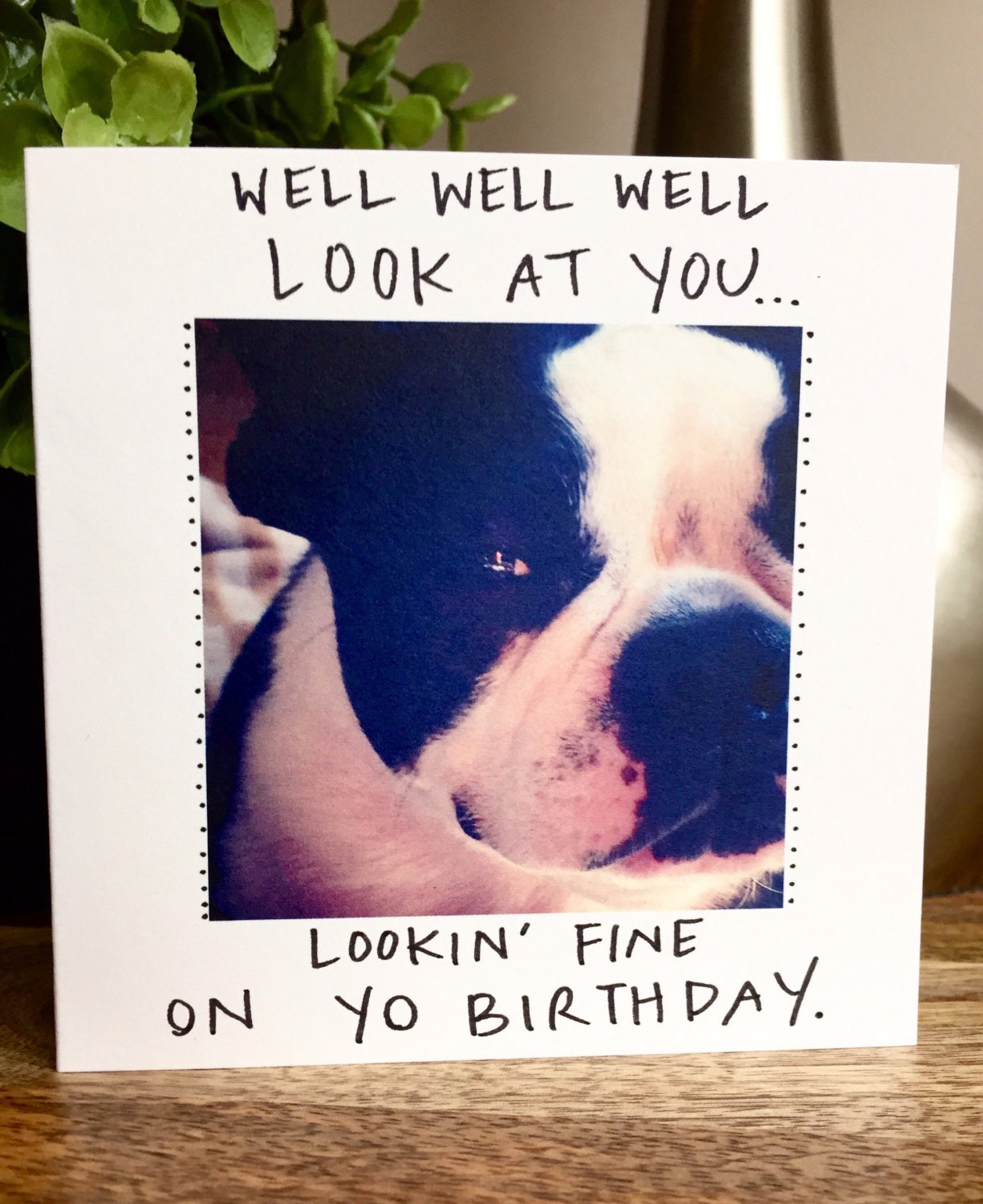 Boston terrier birthday card funny birthday happy birthday card – Humorous Birthday Cards for Her