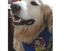BaileyDoodle Beach Club          Dog Bandana   Galveston, Texas