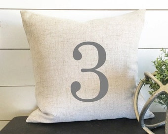 Custom Number Pillow, 18 x 18 Pillow Cover