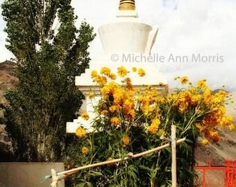 Buddhist Stupa - Color
