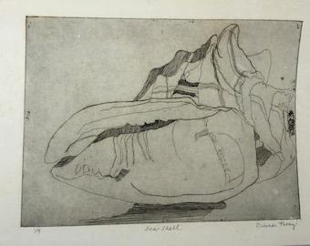 Seashell- etching print