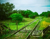 Abandoned Railroad Tracks, Texas Photography, Rural, Wildflowers, Gifts for Texans, Green, Train Photo, Texan Photography, Spring