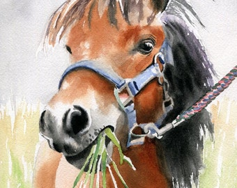 Original Shetland Pony Art watercolor Painting Horse  Lover Unique Gift Equine Equestrian Girls nursery decor