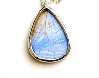 Real Butterfly Wing Necklace Pearl Morpho Hind Wing