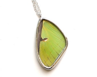 Real Luna Moth Wing Necklace. Insect jewelry. Real Butterfly Wing Necklace. Woodland Sprite Jewelry. Nature Jewelry. Preserved Moth Wing.