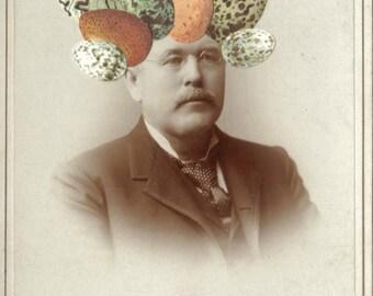 OOAK Original Art Collage, Photo Portrait, Bird Egg Head, Antique Decorative Art, Egghead, Sepia Tone Photo, Egg Art, Mustache Artwork