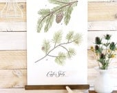 Conifer Study - Pine sprigs canvas wall hanging, wood trim watercolor art printed on textured cotton canvas. Vintage Inspired Science chart