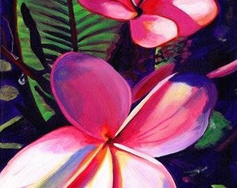 Pink Plumeria 8x10 print - Kauai Hawaii - Hawaiian Aloha Flower - Tropical Decor - Interior Design - Plumerias Frangipani Art - Paintings