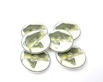 """6 Large Mouth Bass Buttons.  Fish Buttons.  Realistic Image.  3/4"""" or 20 mm.  Fisherman Buttons. Masculine."""