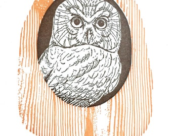 Owl Card, Blank Greeting Cards, Letterpress Card, Blank Nature Card, Bird Card, Woodland Card Set, Handmade Cards, Bird Lover Card, mom card