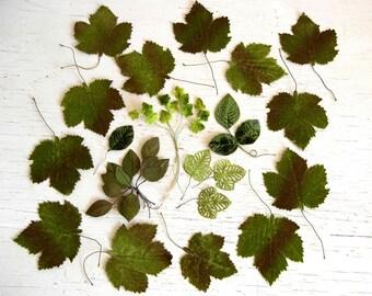 Assorted Vintage Millinery Leaves | Velvet Paper Fabric