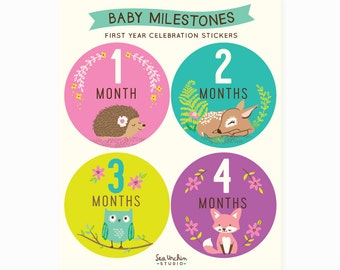 baby Monthly stickers, Baby Milestones, belly Stickers, woodland, baby shower gift for girl, new baby gift