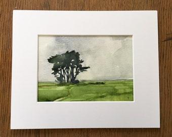Coastal Cypress, Ft. Bragg • original watercolor painting