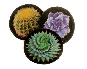 Succulent and Cactus Patches, barrell cactus patch, agave patch, iron on, sew on, premium wool felt, applique