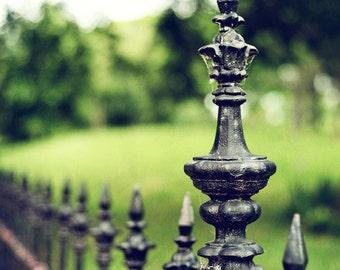 "Fence Photograph. ""Lafayette Square"" Fine Art Print. St. Louis. Green, Wrought Iron, Park, Nature 8x10, 11x14, 16x20, 20x24, 24x30, 24x36"