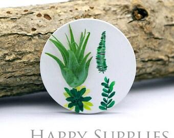 Wearable Tillandsia Plant Jewelry Pendant Art (WTP015)