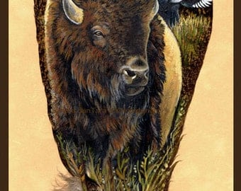 American Bison Buffalo Feather Print