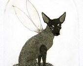 Etching / limited edition original etching (printmaking / graphic art) / original print / original art / dog art / dog etching - 'Fabian'