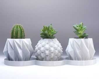 mini succulent planter set - geometric small planters for desk cacti