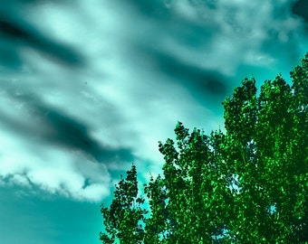 Dark Sky & Tree Print 6 x 4 inches Photograph Photo Manipulation Altered Universe Vibrant Unusual Colours Blue Green