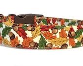 Fall Dog Collar / Thanksgiving Dog Collar / Fall Leaves Dog Collar / Autumn Dog Collar / Orange Brown Dog Collar / Adjustable Dog Collar