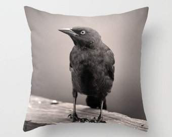 Black Bird, Grackle, Home Decor, Outdoor Pillow Cover, Goth Pillow Cover, Crow, Raven