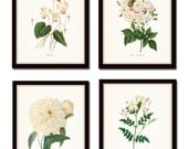 Redoute White Botanicals Print Set No. 2, Giclee, Art Prints, Antique Botanical Prints, Wall Art, Prints, Rose, Peony, White Flower Prints