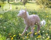 PREORDER Dusty pink unicorn fawn
