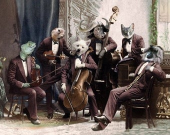 The Philharmonics, Animal Musicians, Vintage Art Print, Athropomorphic, Photo Collage Art, Whimsical Animals, Unique wall decor, Music print