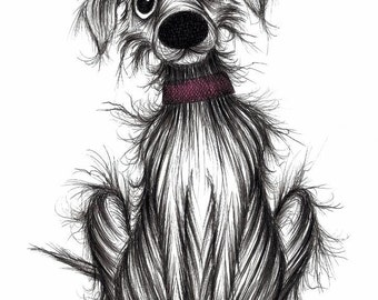 Fred the dog Print download Handsome pet pooch who's sitting patiently Slightly scruffy but cute adorable mutt hound animal picture image