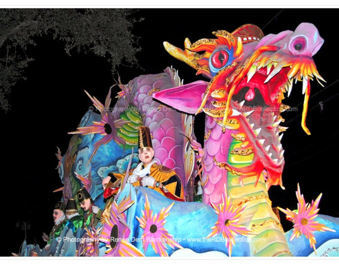 Dragon Photograph