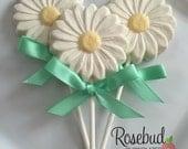 12 Chocolate Daisy Lollipop Favors Wedding Briday Anniversary Garden Tea Party Favors