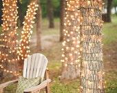 50 Ft. Twinkle Lights String Lights LED String Lights Outdoor Lighting Patio Lighting Wedding light Hanging Lights Warm Romantic Plug Bulb
