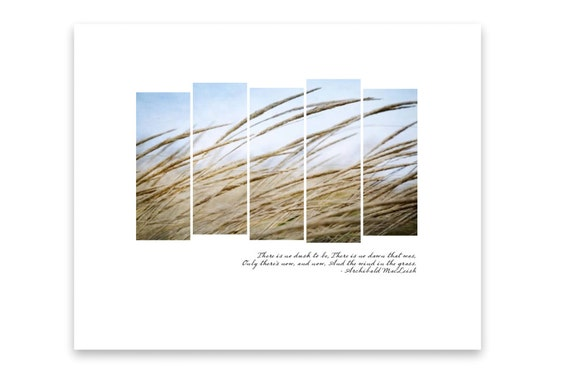 Swaying Grass on a Windy Day with Blue Sky. Windswept Brown Beach Grass. Nature Photography with Quote. Live in the Now.