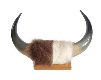 Animal Horns with Fur, Taxidermy, Real Horns, Real Fur, Mounted, Black, Polished, Hat Rack / Towel Hanger