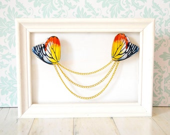 Butterfly wing gift , butterfly wing pin , butterfly brooch , butterfly gift , butterfly gift idea, cardigan guard , collar clip , collar pi