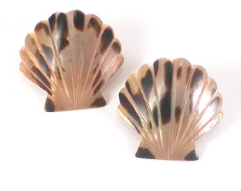 Scallop Earrings - Natural Beige Brown Sea Shell Mother Of Pearl Mop Nautical Pierced