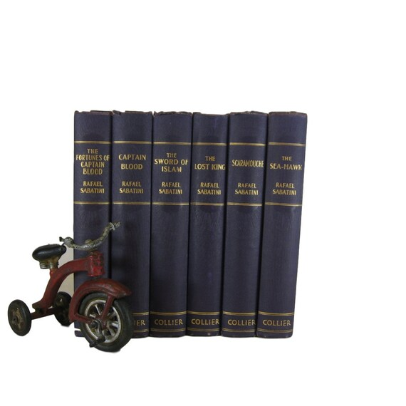 Purple Decorative Books Antique Books Interior Design