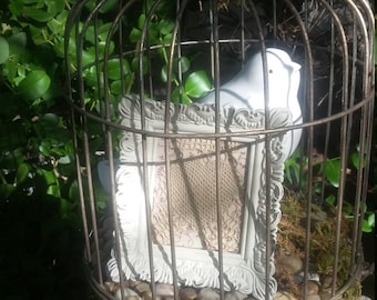 Bird in a Cage Display